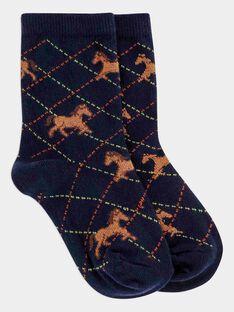 Navy Socks SALAFAGE / 19H4PGC2SOQ705