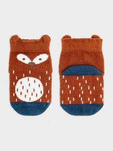 Red Socks SABASIL / 19H4BG21SOQF519
