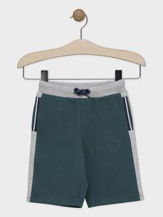 Green Bermuda SACHOUAGE-2 / 19H3PGD2BERG625