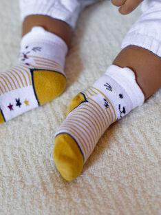 Chaussettes rayées bébé garçon  VAFOUAD / 20H4BG61SOQ001