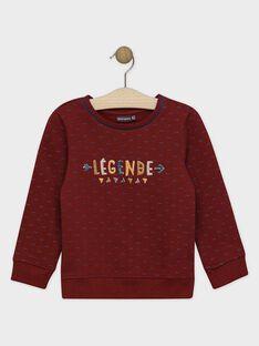 Dark burgundy Sweat Shirt SENOUAGE / 19H3PGI1SWE503