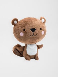 Petit ours 20 cm small bear / 20J7GM34PE2099
