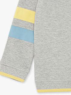 Sweat à capuche gris ardoise motif  ZATIAGE / 21E3PG91SWEJ900