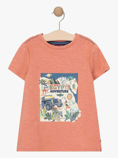 Tee-shirt manches courtes marron garçon  TOCOTAGE / 20E3PGQ2TMCF506