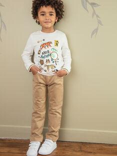 Pantalon marron doublé jersey ZACIAGE / 21E3PG72PANI812