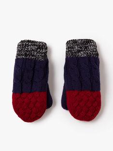 Moufles à torsades en tricot VIRUAGE / 20H4PGI3GAN070