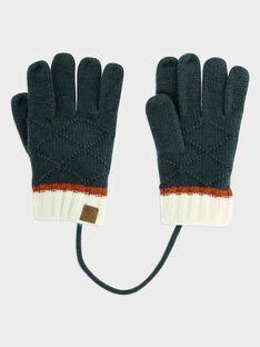 Green Gloves SAMANAGE / 19H4PGC1GANG618