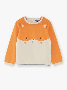 Pull marron et beige avec jacquard  VALEON / 20H1BGR1PUL808