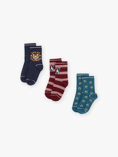 Lot de 3 paires de chaussettes assorties enfant fille BUNIAGE / 21H4PGB1LC3715