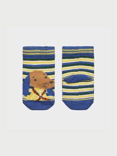 Yellow Socks RACORTO / 19E4BG62SOQB106